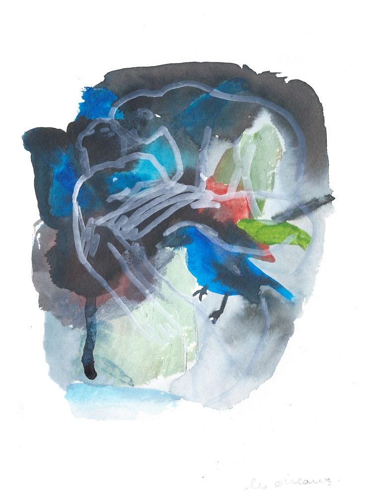 oiseaux_web