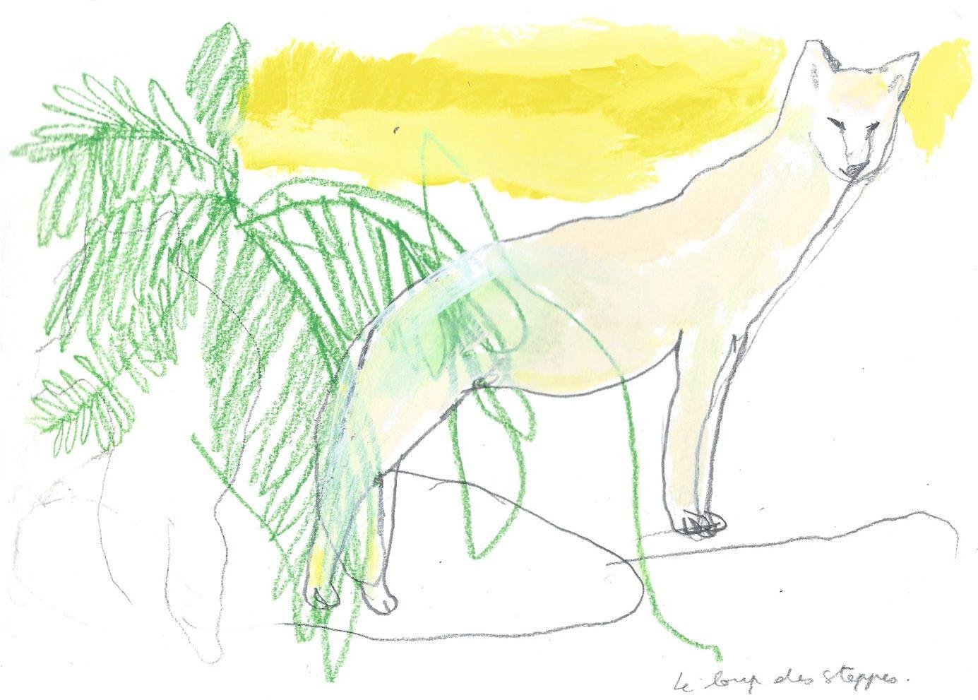 Le loup des steppes, acrylique et crayon, 2016