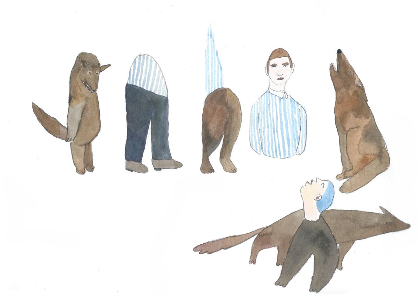 le loup des steppes ©louisemezel 2016