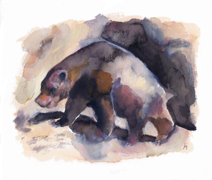 L'ours dans l'art préhistorique, Marcel er Simone 2016 ©louisemezel