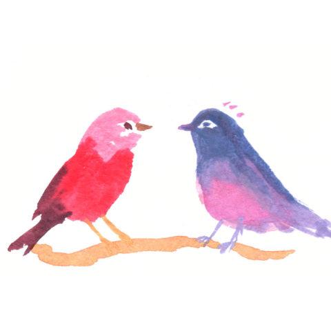 oiseaux-définitifs_web