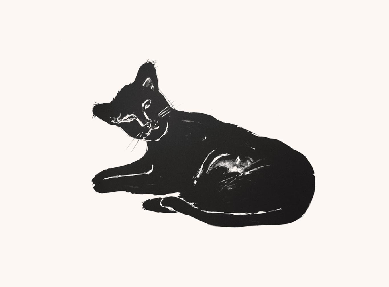 Patte noire, 76 x 56 cm