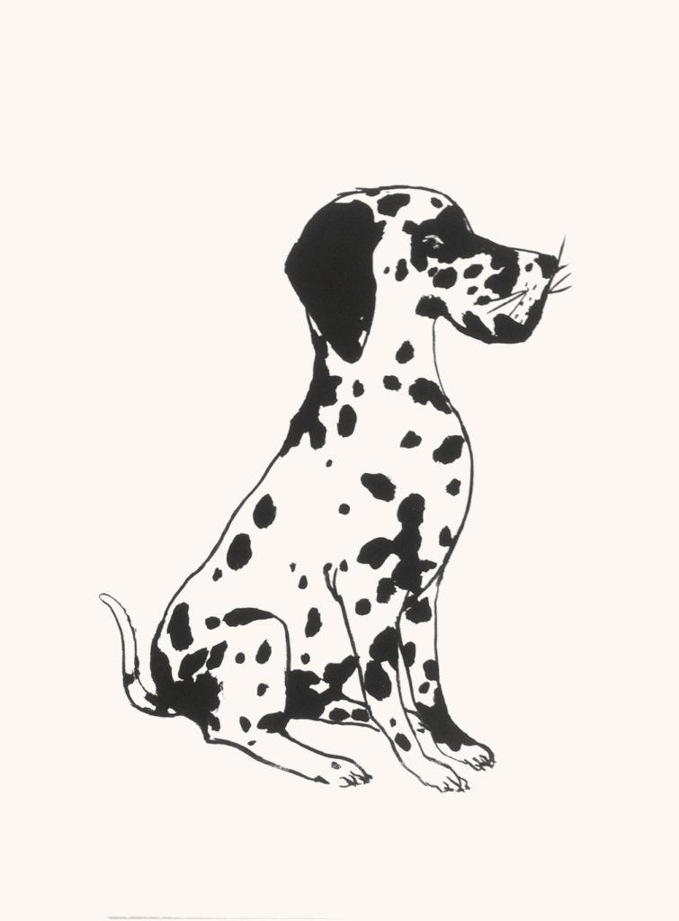 Le deuxième dalmatien, 56 x 76 cm