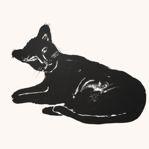 Patte noire