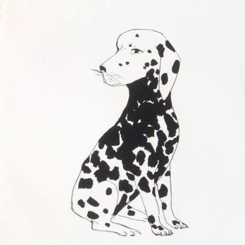 Le quatrième  dalmatien, 56 x 76 cm