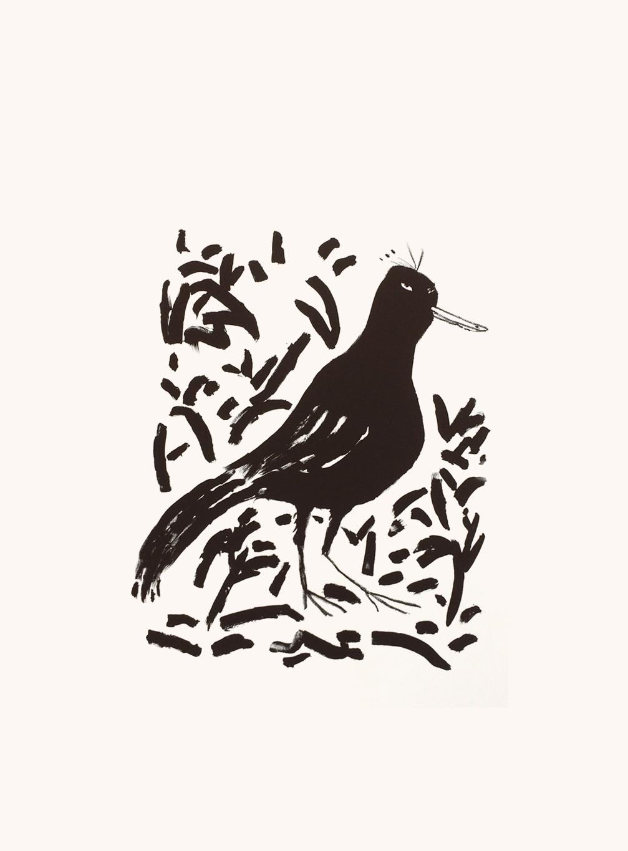L'oiseau rare, 56 x 76 cm